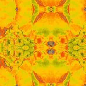 Desert_Fabric