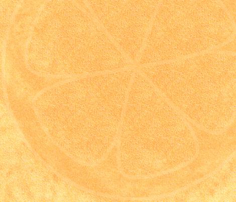 CitrusOrange fabric by nicole_wilcox on Spoonflower - custom fabric