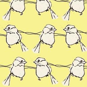 Birdfight in Yellow