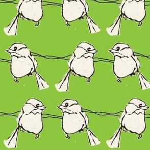 Birdfight in Green