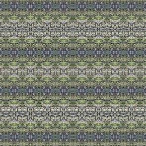 Durham Bluebells