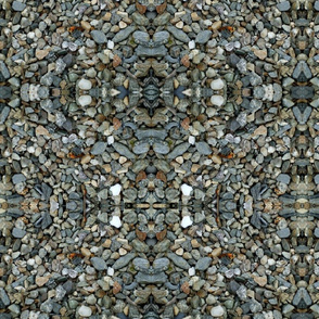 DSCF1311