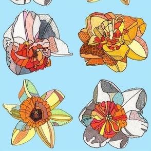 daffodils in blue