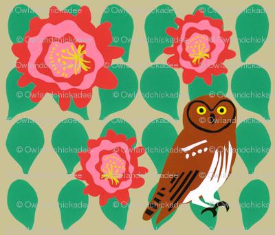 cactus_flower_elf_owl_1