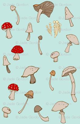 Shrooms 1