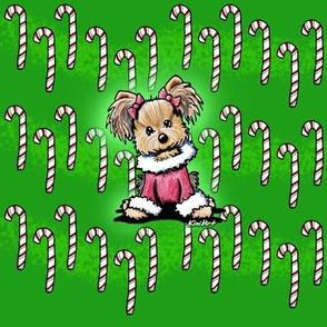 Yorkie Candy Cane Cutie 300