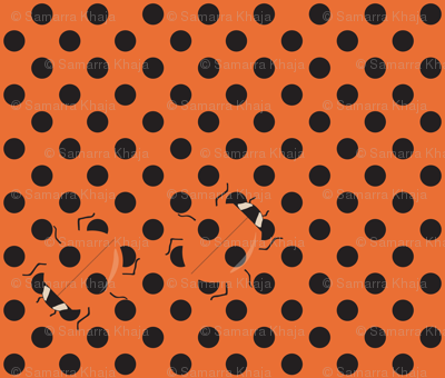 Coccinellid Camouflage