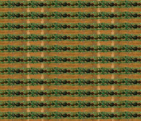 Rtourquoisesnakeskin150_shop_preview