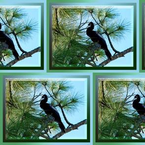 double_fram_bird_for_fabric_400_dpi