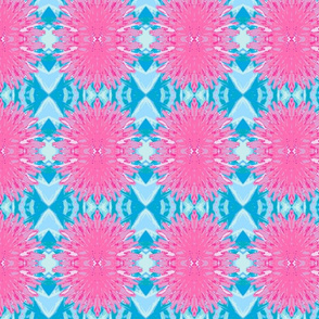 Pink Dandilion