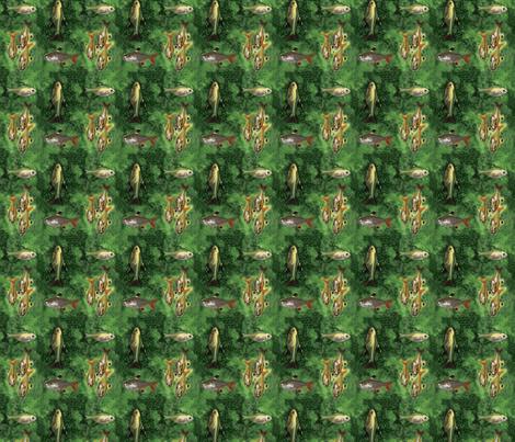 I-spy x-ray-fish fabric by kaeledra on Spoonflower - custom fabric