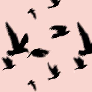 flying_birds_sunset