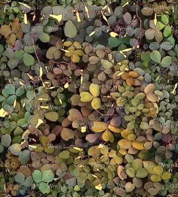 Shamrock Camouflage