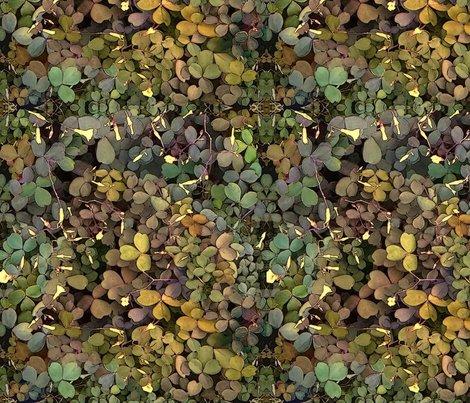 Rrshamrock_camouflage_shop_preview
