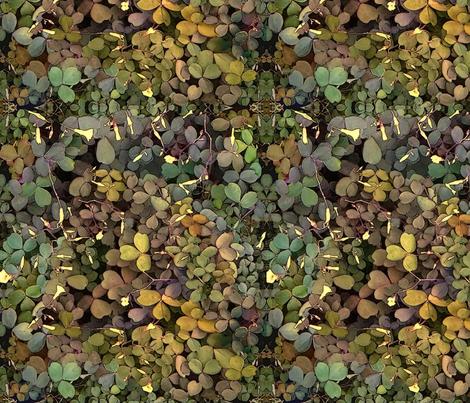 Shamrock Camouflage fabric by wren_leyland on Spoonflower - custom fabric