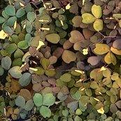 Rrshamrock_camouflage_shop_thumb