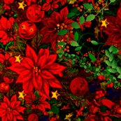 R303240_rrpoinsetta_-_version_2_shop_thumb