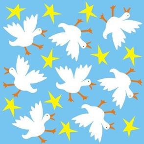 quacky_duck