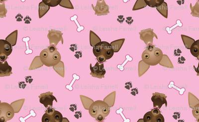 pink_chihuahuas