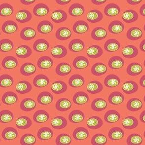 Star Bounce Melon