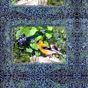 Finches and Violets