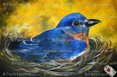 bluebird_large-ed