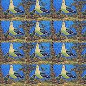 Rrtopanga-birds_etc.june__09_080_ed_ed_ed_ed_ed_shop_thumb