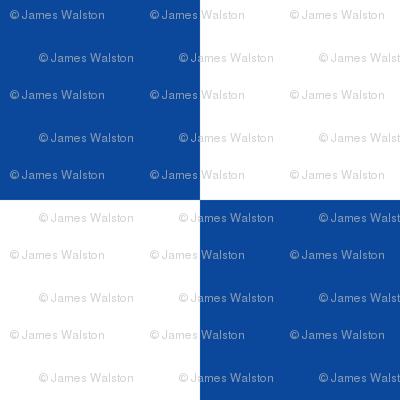 Blue White Checker Pattern