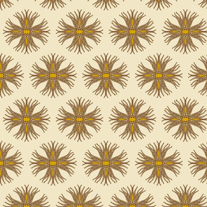 candy_cane_anemone_brown