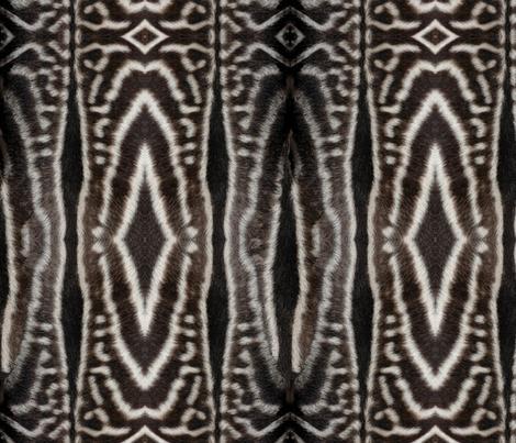 Zebra fur fabric by hannafate on Spoonflower - custom fabric