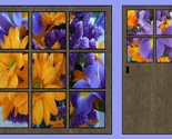 Rwindow-small2-flowers_thumb