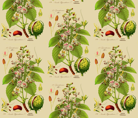 Chestnut fabric by ravynka on Spoonflower - custom fabric