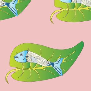 fish on leave