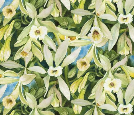 Vanilla Sample One fabric by helenklebesadel on Spoonflower - custom fabric