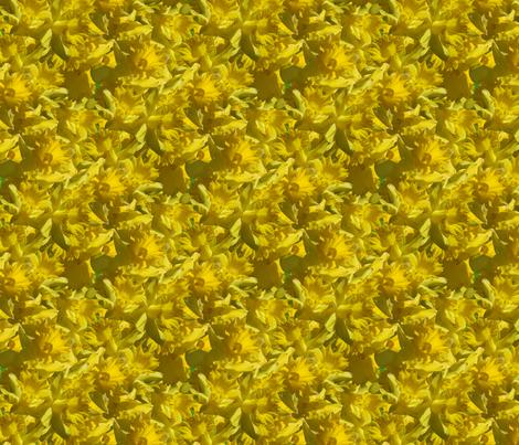 Daffodill delerium fabric by hannafate on Spoonflower - custom fabric