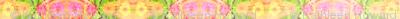 edit_c_zinnia_border_6300x300_Picnik_collage