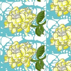 Chartreuse Peony