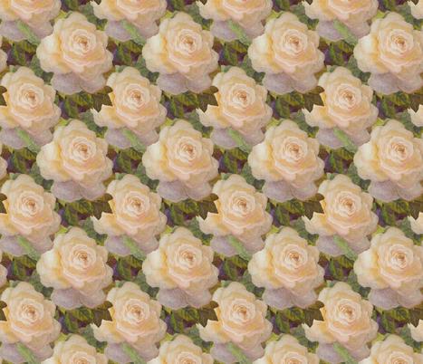 Peacerosefield fabric by leslipepper on Spoonflower - custom fabric