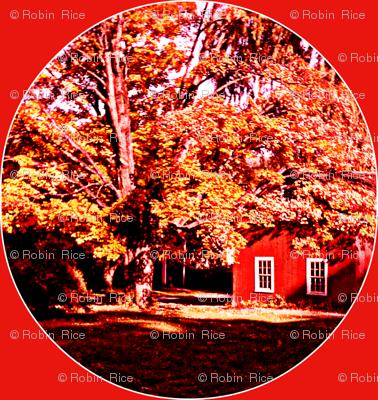 My Berkshire Home
