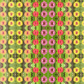 edit_3b_goofy_ripple_zinnia_border_6300x300_Picnik_collage