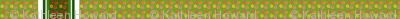 edit_four_zinnia_stripe_border