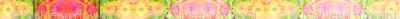 D_zinnia_border_6300x300_Picnik_collage