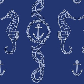 Rope_and_anchor