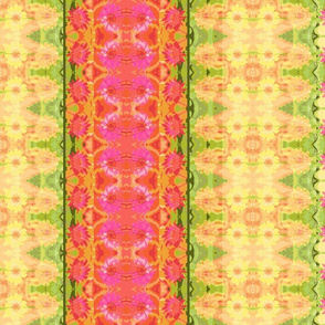 24 D_zinnia_border_6300x300_Picnik_collage-ch