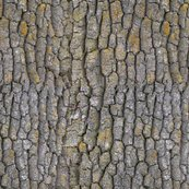 Rgarry_oak_bark_-pattern_shop_thumb