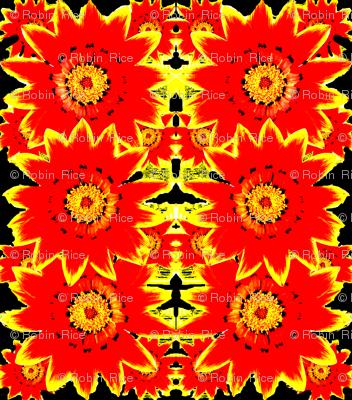 Bright Day Flower
