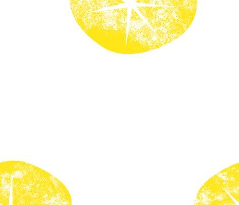 Rmotif_oursins_sun_shop_preview