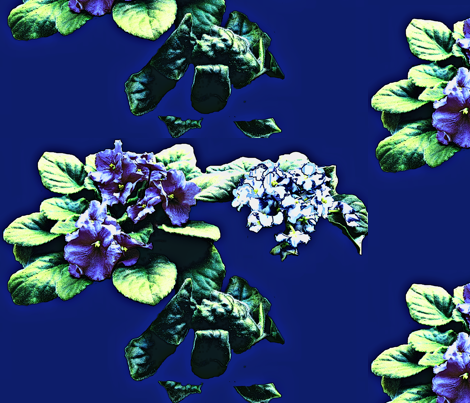 African Violets fabric by robin_rice on Spoonflower - custom fabric