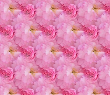 Peach Blossom fabric by debbiek on Spoonflower - custom fabric