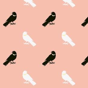 Large Warm Birds